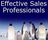 the effective sales professional